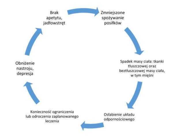 Schemat powstawania niedożywienia u pacjenta onkologicznego